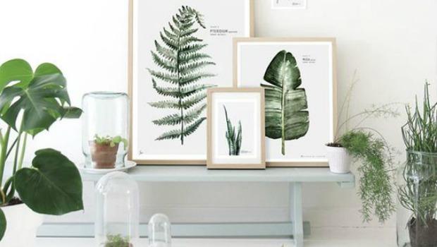 Botanische-woontrend